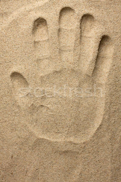 Hand in the sand Stock photo © alekleks