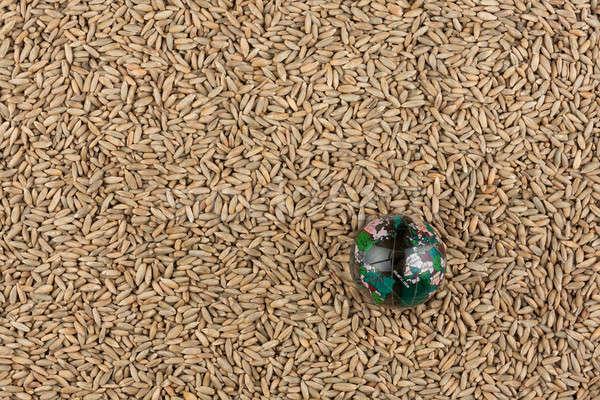 Szkła świecie żyto nasion ziarna gruntów Zdjęcia stock © alekleks