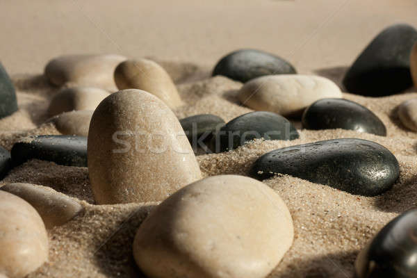 Closeup of stones sticking out of the sand in the sunlight Stock photo © alekleks