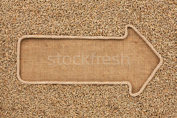 Pointer made from rope with grain rye  lying on sackcloth Stock photo © alekleks