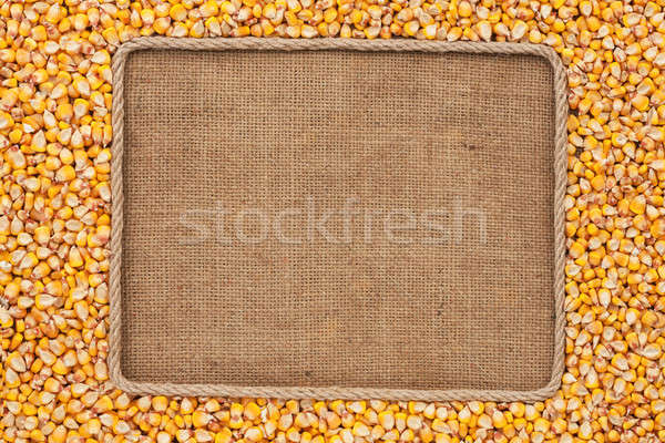 Frame made of rope with corn grains on sackcloth Stock photo © alekleks