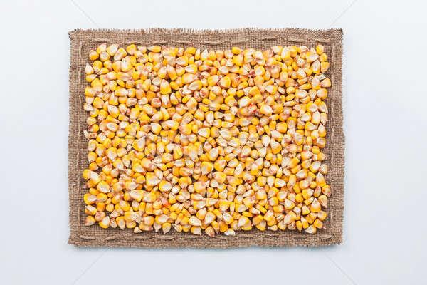 Cadre toile de jute maïs grain sombre blanche Photo stock © alekleks