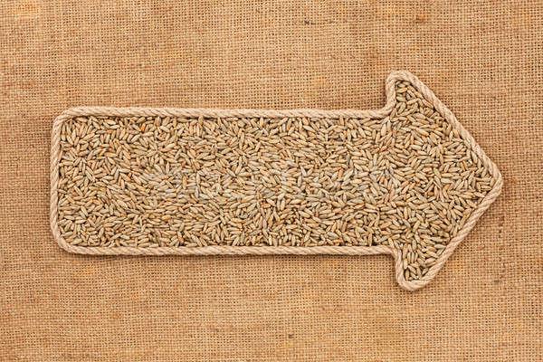 Kötél gabona rozs űr keret felirat Stock fotó © alekleks