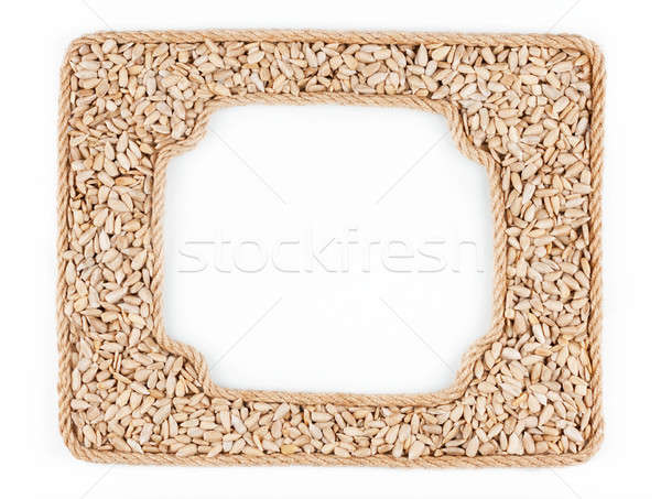 Two frames of the rope with sunflower seeds on a white backgroun Stock photo © alekleks