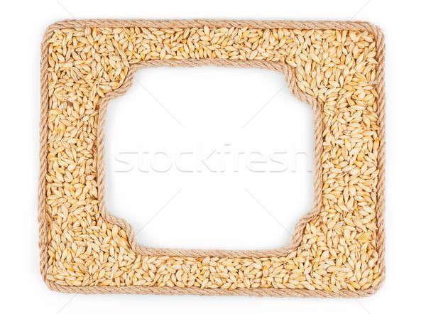 Kettő keret kötél árpa gabona fehér Stock fotó © alekleks