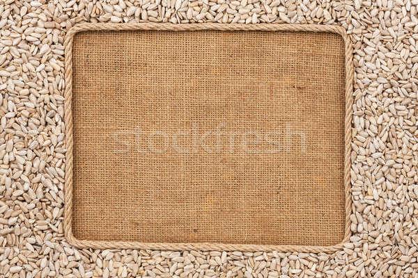 Frame made of rope with sunflower seeds on sackcloth Stock photo © alekleks