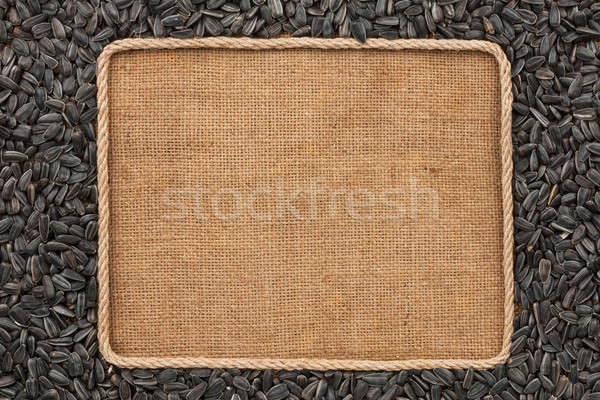 Frame made of rope with sunflower seeds on sackcloth Stock photo © alekleks