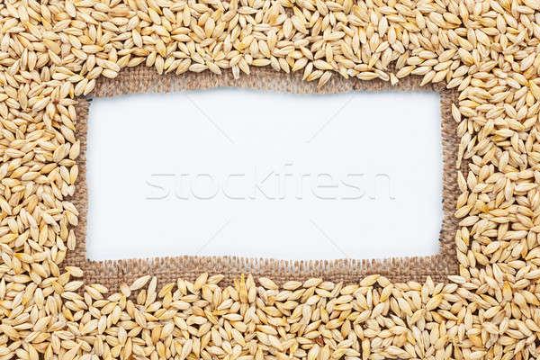 Quadro pano de saco cevada branco comida projeto Foto stock © alekleks