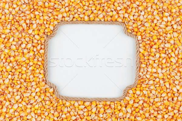 Keret kötél kukorica magvak fehér hely Stock fotó © alekleks