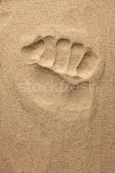 Lenyomat kéz homok nap háttér nyár Stock fotó © alekleks