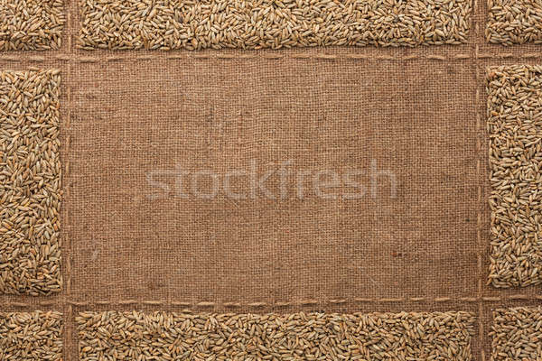 Beautiful frame with rye  on sackcloth Stock photo © alekleks