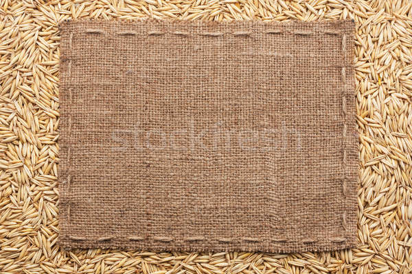 Classical frame on oats grain Stock photo © alekleks