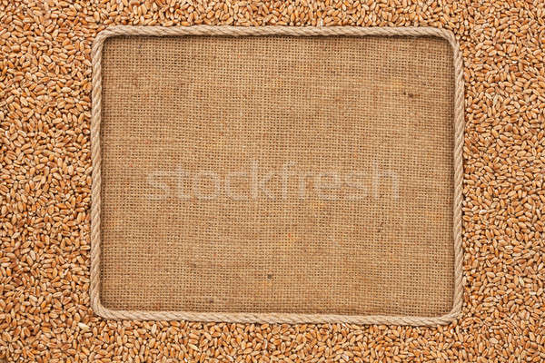 Frame made of rope with wheat grains on sackcloth Stock photo © alekleks