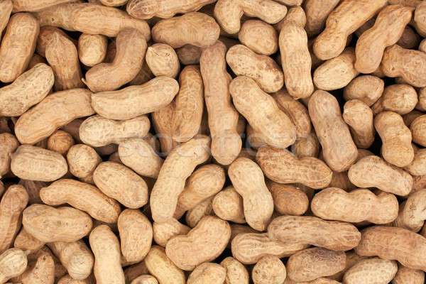 a bunch of peanuts Stock photo © alekleks