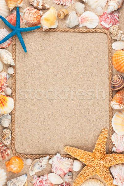 Belo quadro corda conchas areia mar Foto stock © alekleks
