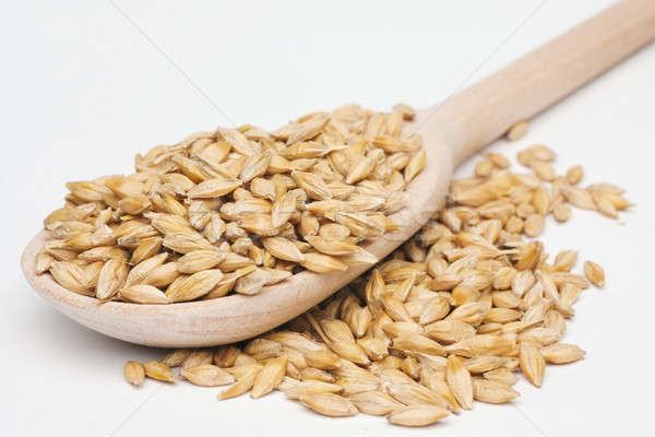 barley  with a wooden spoon  Stock photo © alekleks
