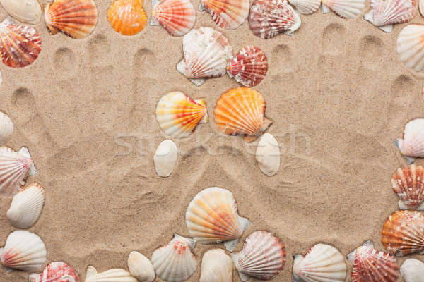Imprint hands on the sand among the shells Stock photo © alekleks
