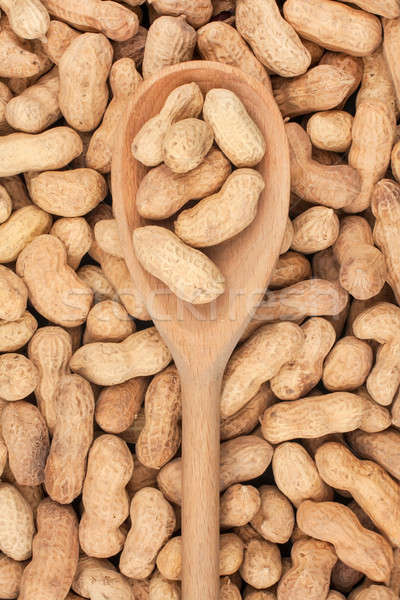 Wooden spoon with unpeeled peanuts  Stock photo © alekleks