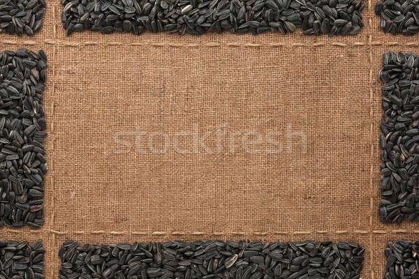 Belo quadro girassol sementes lugar texto Foto stock © alekleks