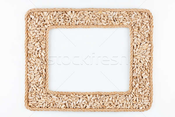 Dois quadros corda girassol sementes branco Foto stock © alekleks