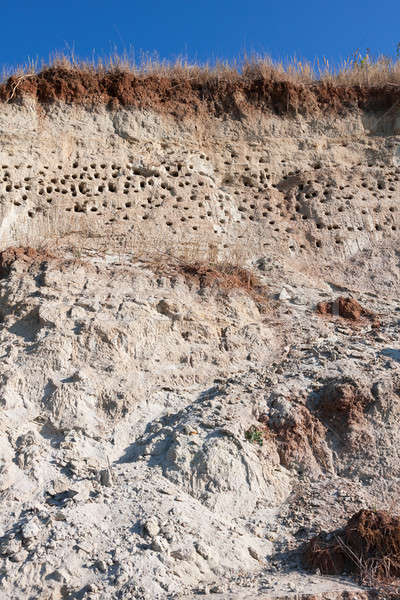 砂 ビーチ 空 自然 生活 パターン ストックフォト © alekleks