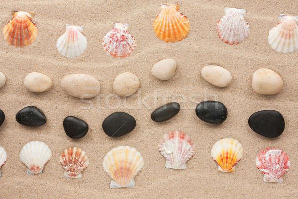 Quadro concha pedra ondulado areia praia Foto stock © alekleks