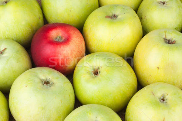 Red apple among green apples lying on sackcloth Stock photo © alekleks