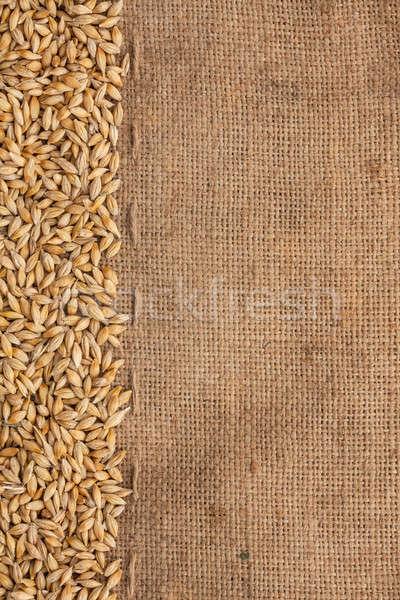 Jęczmień konopie puszka używany żywności charakter Zdjęcia stock © alekleks