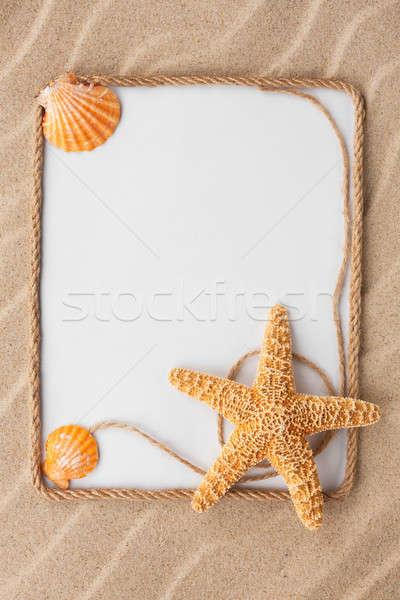 красивой кадр веревку звездой морем снарядов Сток-фото © alekleks