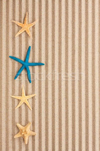 Starfish mentir areia lata usado praia Foto stock © alekleks