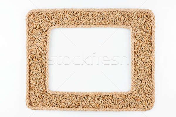 Iki kareler halat çavdar tahıl beyaz Stok fotoğraf © alekleks