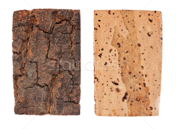 The bark and wood of cork oak Stock photo © alekleks