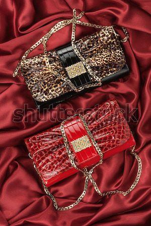 Schoenen zak kan gebruikt vrouwen sexy Stockfoto © alekleks