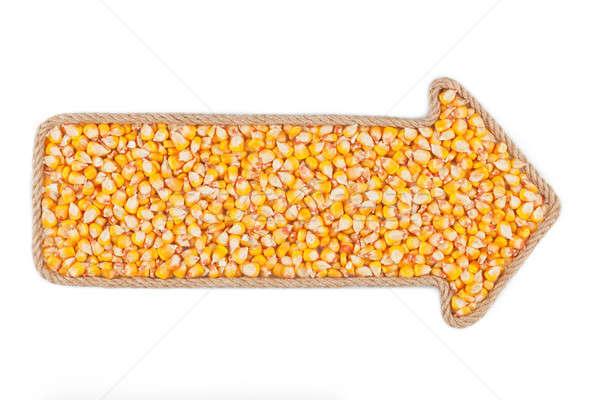 Seta corda milho branco fundo quadro Foto stock © alekleks