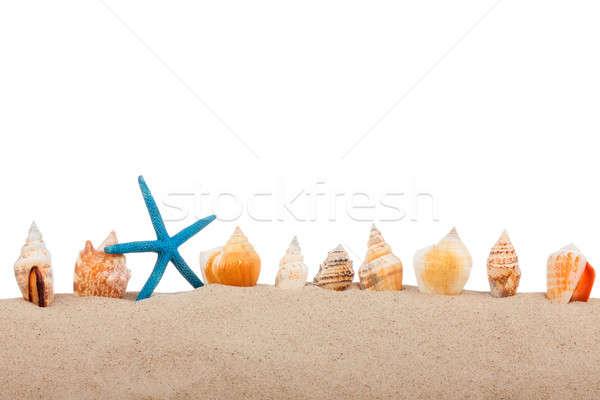 Isolated marine star  and  seashell  Stock photo © alekleks
