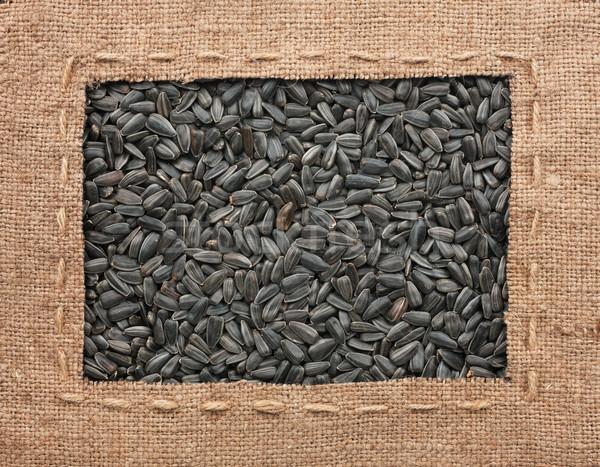 Cadre toile de jute ligne mensonges tournesol semences Photo stock © alekleks