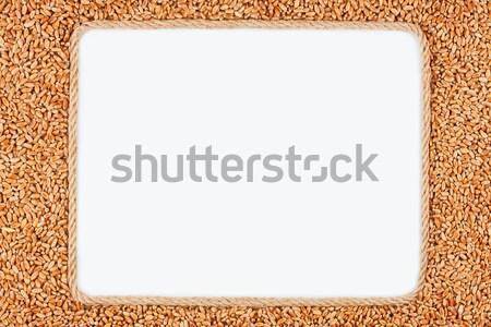 Frame touw mais witte plaats tekst Stockfoto © alekleks