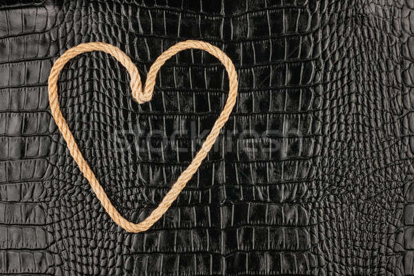 Simbólico corazón cuerda cocodrilo cuero textura Foto stock © alekleks