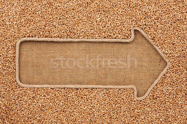 Stock photo: Pointer made from rope with grain wheat  lying on sackcloth