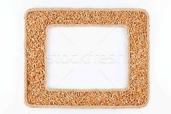 Two frames made of the rope with wheat  grain on a white backgro Stock photo © alekleks