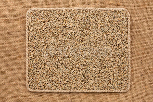 Frame made of rope with rye grains on sackcloth Stock photo © alekleks