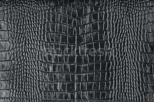 Natural crocodile skin Stock photo © alekleks