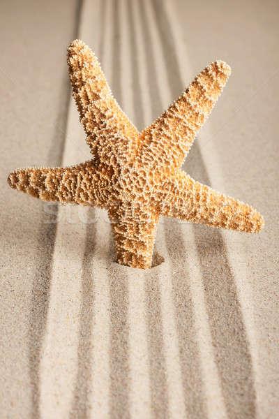 Estrela fora areia lata usado natureza Foto stock © alekleks