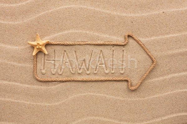 Arrow liny morza muszle słowo Hawaii Zdjęcia stock © alekleks