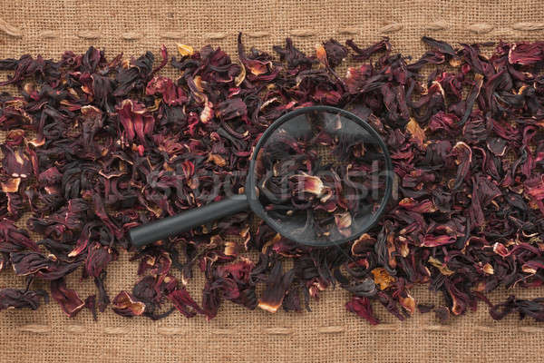 Magnifying glass lies on hibiscus  and sacking Stock photo © alekleks