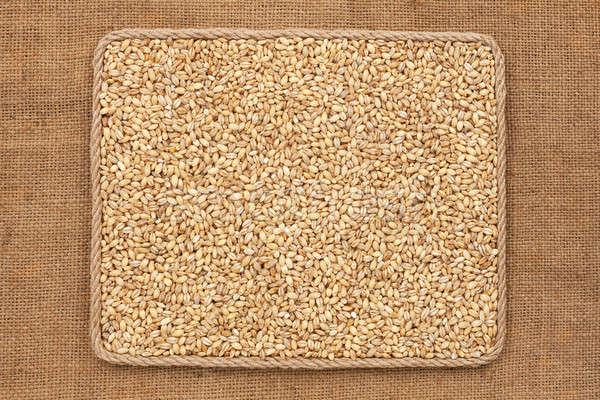 Frame made of rope with  pearl barley  grains on sackcloth Stock photo © alekleks