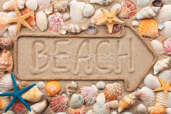 Foto d'archivio: Corda · spiaggia · mare · conchiglie · starfish
