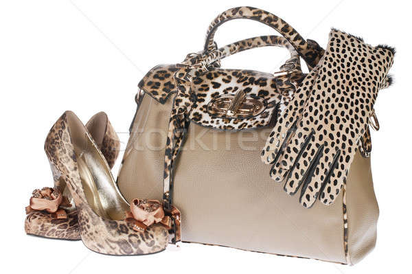 Leopard bag, shoes and gloves Stock photo © alekleks