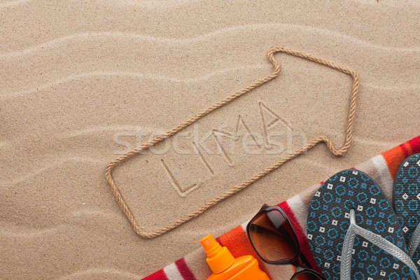 Lima  pointer and beach accessories lying on the sand Stock photo © alekleks