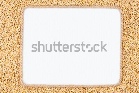 Keret kötél fehér hely szöveg grafika Stock fotó © alekleks